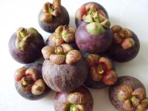 タイの果物 マンゴスチン